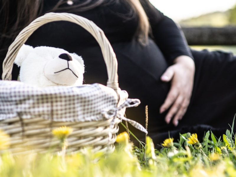 Surrogacy Vs Egg Donation